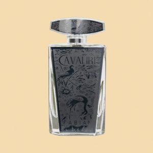 Fabian Cavaliri Silver EDP 100ml Bottle